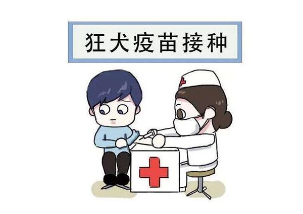广西胜博发手机版官网公司
